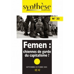 Synthèse nationale n°33 - Septembre-octobre 2013