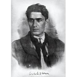 Carte postale - Codreanu