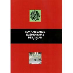 Connaissance élémentaire de l'Islam - Edouard Pertus