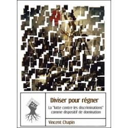 Diviser pour régner - Vincent Chapin