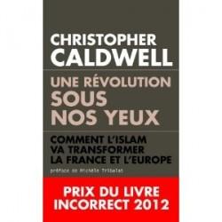 Une révolution sous nos yeux - Christopher Caldwell