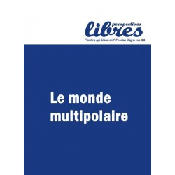 Perspectives libres - n°8-9 - dec. 2012 - mars. 2013