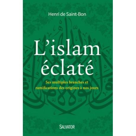 L'islam éclaté - Henri de Saint-Bon