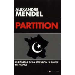 Partition - Alexandre Mendel
