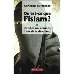 Qu'est-ce que l'islam ? Les sites musulmans français le dévoilent  - Christian de Moliner