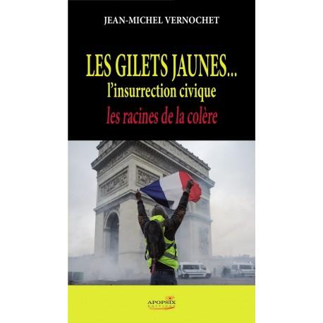 Les gilets jaunes - Jean-Michel Vernochet