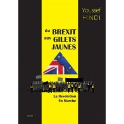 Du Brexit aux gilets jaunes - Youssef Hindi