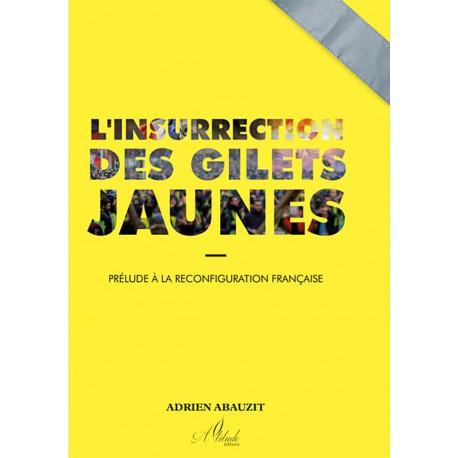 l'insurrection des gilets jaunes - Adrien Abauzit