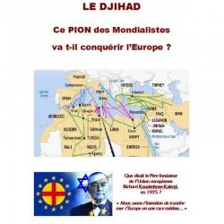 Le Djihad : ce pion des mondialistes va-t-il conquérir l'Europe ?