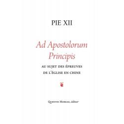 Apostolorum principis - Pie XII