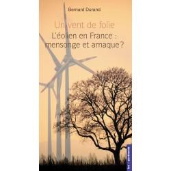 Un vent de folie - Bernard Durand