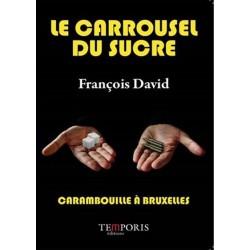 Le carrousel du Louvre -  François David
