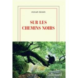 Sur les chemins noirs - Sylvain Tesson