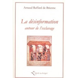 La désinformation autour de l'esclavage - Arnaud Raffard de Brienne